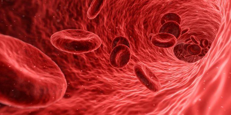 なぜ慢性腎臓病患者(CKD)で貧血を治療するのか?