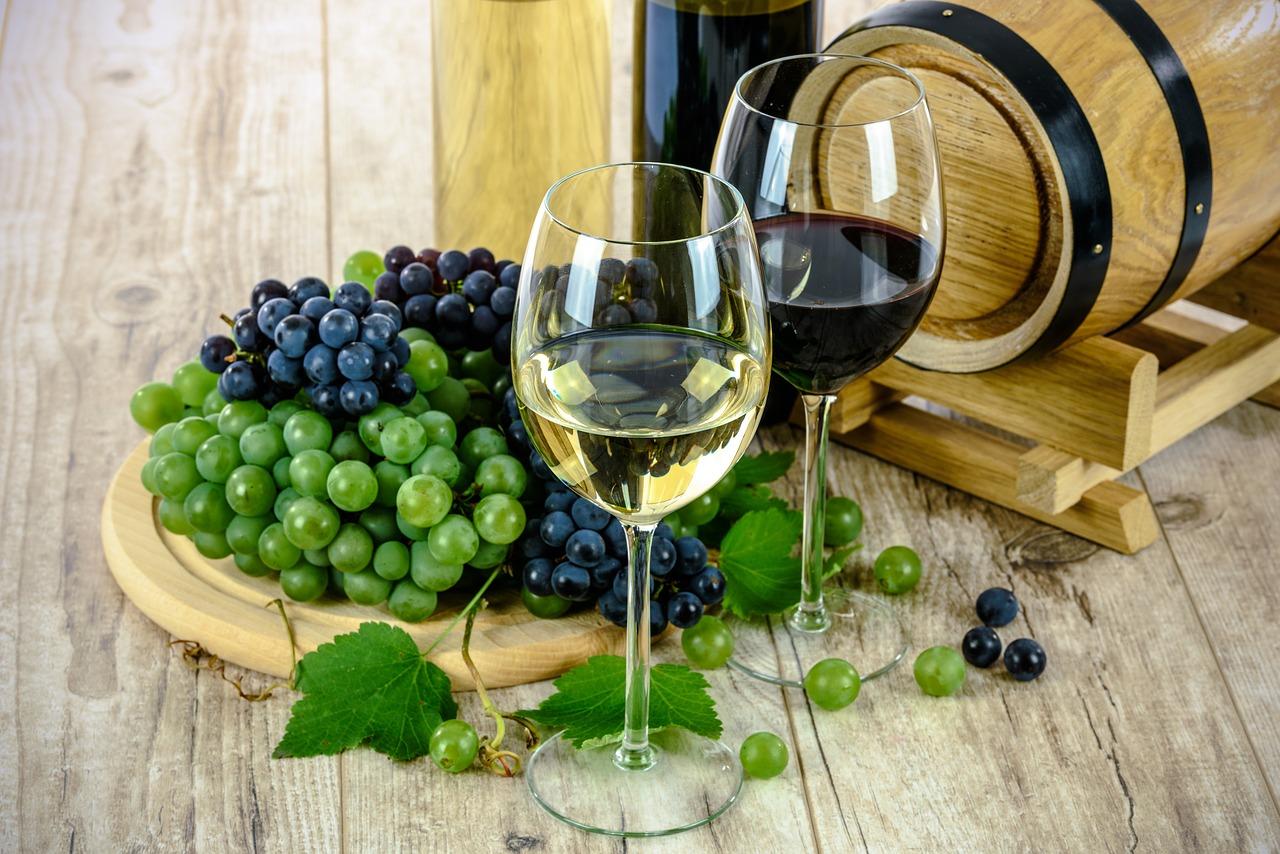 慢性腎臓病(CKD)でもワインは飲んで良いのか 〜医学的考察をしてみた。〜